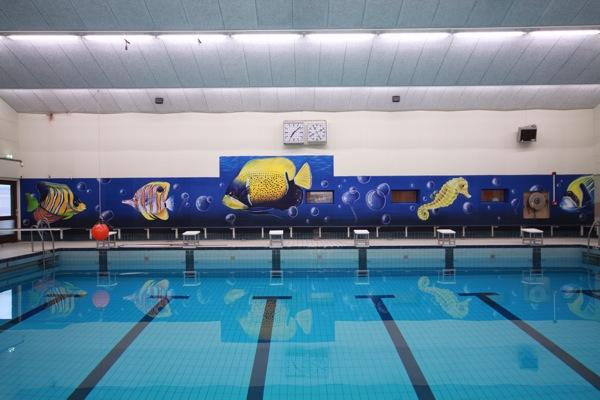zwembad parrel groningen: focuspaddepoel de parrel in halloweensfeer